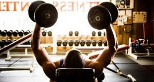 Instant Muscle Hack System guide