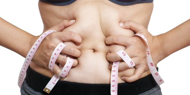 weight loss tips to lose belly fat