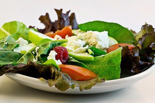 the salvation diet program ebook