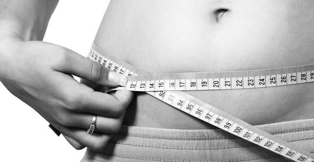 salvations diet program review